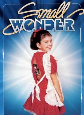 """Small Wonder"" DVD"